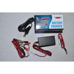 MC Batteriladdare 6V